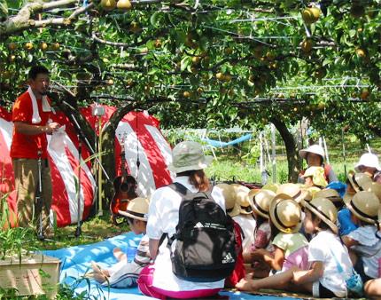 梨のイベント写真1